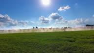 Sprinkler gießen Field