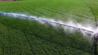 Sprinkler Watering Field