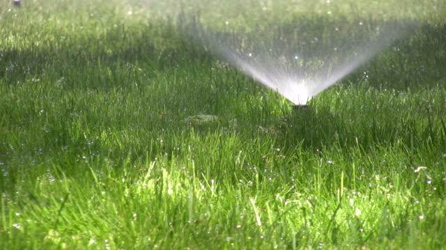 Sprinklers. Agricultural Sprinkler spraying water on back yard green grass.