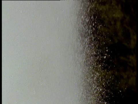 Spurting geyser spraying into air, Rotorua, North Island, New Zealand