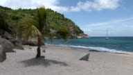 St Barth, amazing beach and palm trees