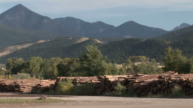 PAN Stacked tree trunks and trees mountains behind at the RY Timber company with a green SUV driving by / Ennis Montana United States