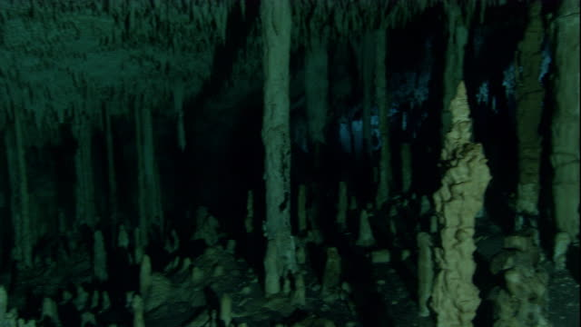 Stalactites and stalagmites fill an underwater cave in Mexico. Available in HD.
