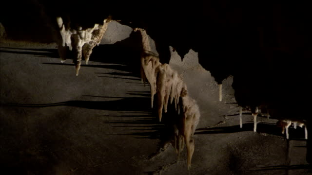 Stalactites drip in a cave. Available in HD