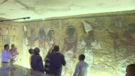 Standing before the majestic gold ochre and white frescos of Tutankhamun's tomb British archaeologist Nicholas Reeves on Monday passionately defended...