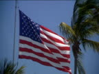 Stars And Stripes flying in wind next to palm trees