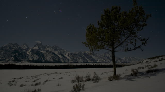 Stars wheel over snow covered trees and mountain.