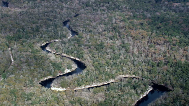 State Border Along St Mary's River  - Aerial View - Florida,  Nassau County,  United States