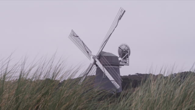 Static frame shows Golden Gate Park windmill