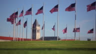 A static shot of a circle of flags with a clock tower in the distance in Washington DC.