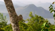 Static shot of mountains in Rio de Janeiro, Brazil