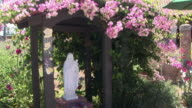 MS Statue of Mary surrounded with flowering bush at Mission San Juan Capistrano / California, USA