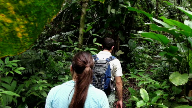 POV steady cam shot of man and woman walking in jungle.