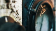 steampunk macro 11