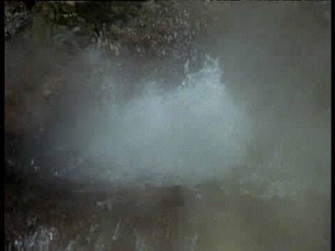 Steamy hot spring boils and splashes, Rotorua, North Island, New Zealand