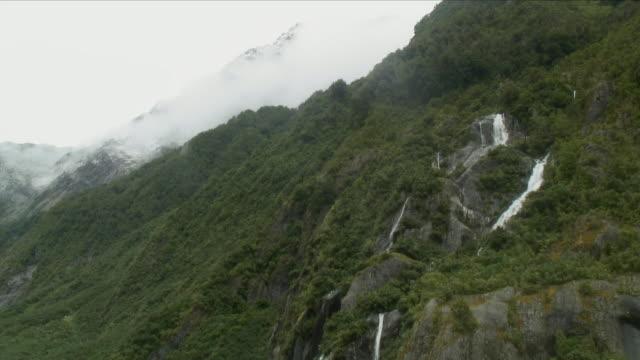 MS LA Steep Green Hillside in Mist / Franz Josef Glacier, New Zealand