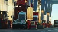 Stevedores Co-ordinating at the Port of LA
