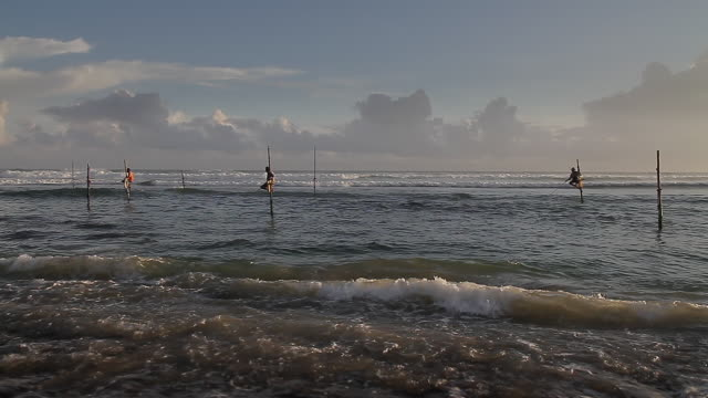 WS Stilt fishermen (pole fishermen) casting for sardines / Ahangama, Southern Province, Sri Lanka