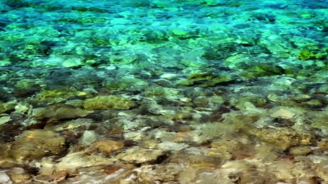 Steinen im Wasser.