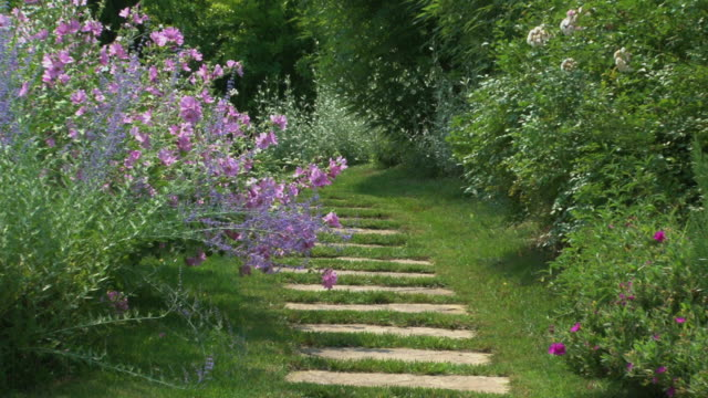 Stone walkway in a marvelous flowered botanical garden, back zoom