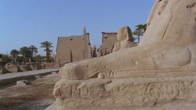 CU Stones/TU WS Avenue of the Sphinxes leading up to Luxor Temple/ Luxor, Egypt