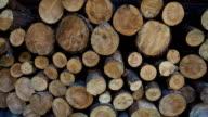 Stored round firewood