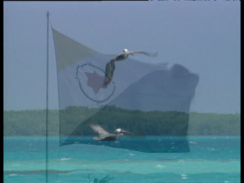 Storks in flight flag of Bonaire Netherlands Antilles and picturesque crystal clear Caribbean waters