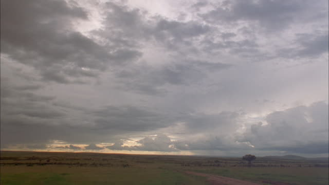 Storm clouds move across the arid plains. Available in HD.