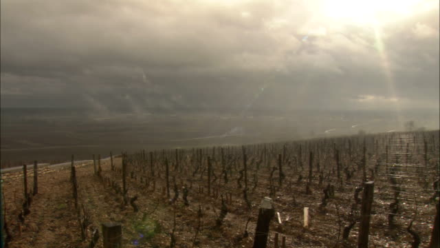 WS Storm clouds over vineyard / Burgundy, France