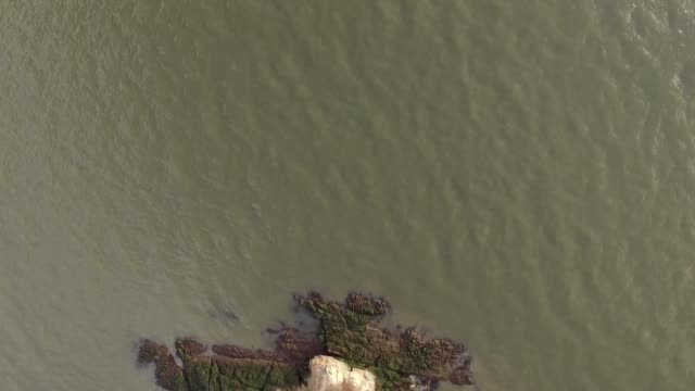 Straight down camera flyover small island in San Francisco Bay