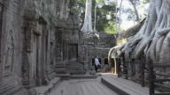 PAN / Strangler fig tree roots growing over Ta Prohm temple with Apsara relief