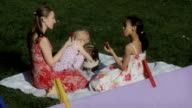 Strawberry garden picnic