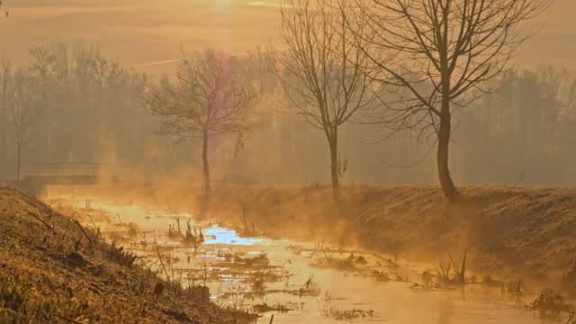 WS Stream Bed In The Mist