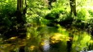 stream, brook, flow, torrent, river
