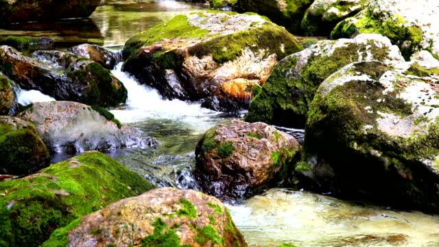 Stream flowing between moss-covered rocks.