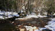 Stream Mist Frozen Winter Wilderness Forest