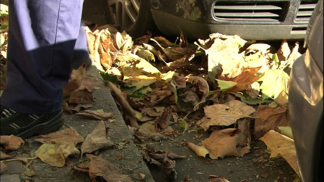 A street cleaner uses a push broom and a shovel to clear leaves from steps.