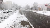 Street during snowing