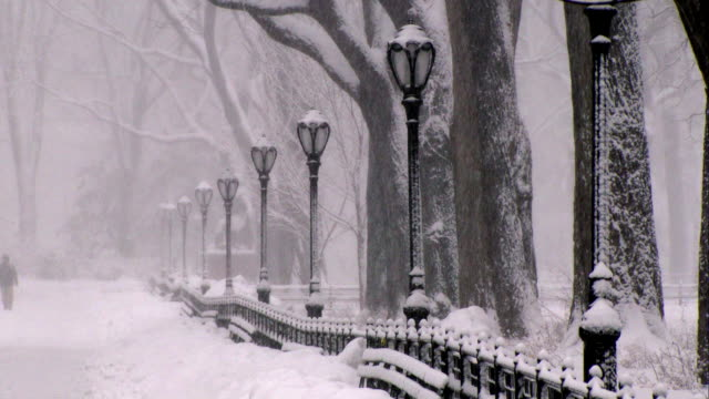 Street lights lining a path in Central Park during a snowstorm