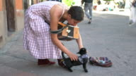 Street musician adjusts bandanna on her cat, WS