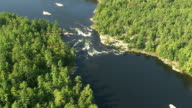 Strong white water rapids churn in a river, surrounded by dense forest, northern Canada Available in HD.