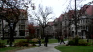 Students stroll on a pathway through a campus. Available in HD.