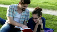 Students studying in the park