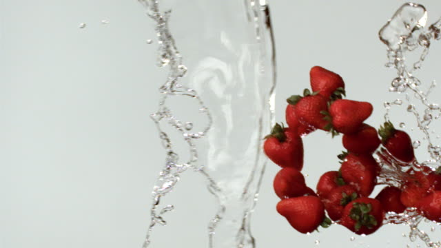 SLO MO MS Studio shot of water drops and strawberries falling against white background