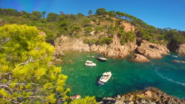 Stunning corner in the Costa Brava Mediterranean Sea with crystal water and nice colors surrounded by pine trees during summer vacations in the region.