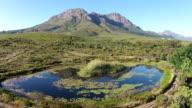 Splendido paesaggio Fynbos con una diga sorvola