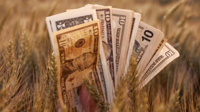SLO MO framgångsrikt jordbruk företag