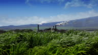 Zuckerrohr-Feld und Raffinerie (Hawaii