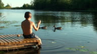 Summer. Boy feeding duck