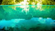 See im Sommer